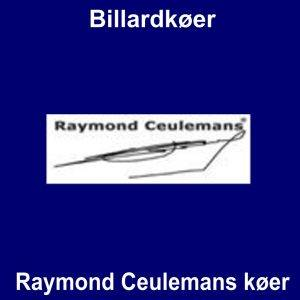 Raymond Ceulemans køer