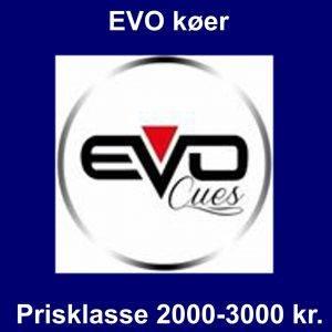 2000 – 3000 kr.
