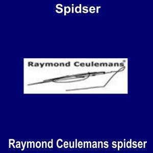 Raymond Ceulemans spidser